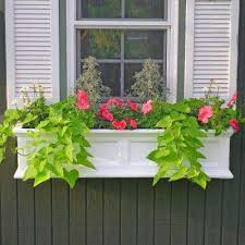 Wooden Window Flower Boxes - window boxes pots u0026 planters the home depot