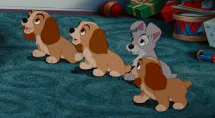 lady tramp u0027s puppies baby animals cuter