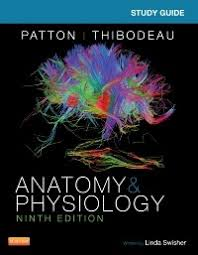 Anatomy And Physiology Study Tools Study Guide For Anatomy U0026 Physiology 9780323316897 Us Elsevier