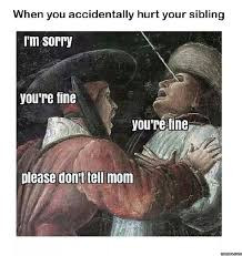 Who Hurt You Meme - when you accidentally hurt your sibling http funphotololz com