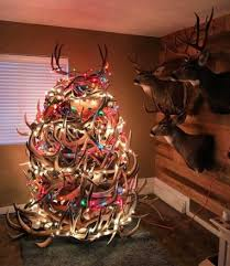 the 20 best shed antler trees gohunt