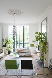 Plants For Living Room Living Room Indoor Plant Decor Transitional Design In Home