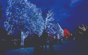 Zoo Lights Schedule by Lights To Be Bright At Toledo Zoo The Blade