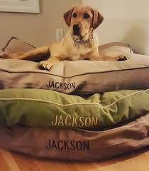 Bean Bed 211 Best Best Friends Images On Pinterest Bean Boots Beams And