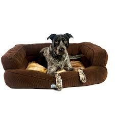 20 orthopedic pet beds ozzie large mocha orthopedic dog bed