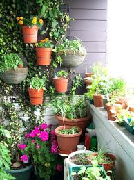 Patio Container Garden Ideas Decoration Indoor Container Gardening Ideas Attractive Plants