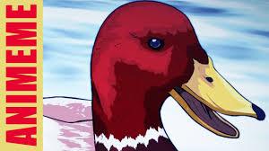 Advice Mallard Meme Generator - bad advice duck