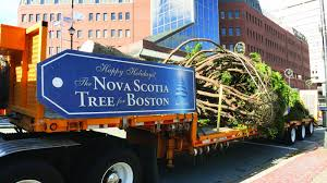 5 nova scotia holiday traditions not to be missed the chronicle