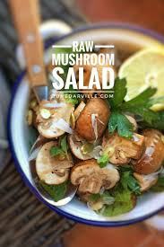 Raw Food Dinner Ideas 257 Best Mediterranean Diet Recipes Images On Pinterest