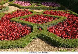 shape flower bed stock photos shape flower bed