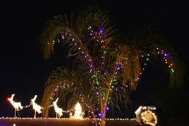 christmas palm tree santa and reindeer my christmas ligh u2026 flickr