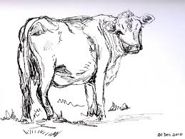 best 25 cow drawing ideas on pinterest cartoon cow learn