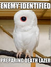 Owl Memes - cyborg owl wants your flesh by applesnapple meme center