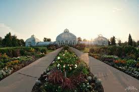 Botanical Garden Internship Mba Internships Weighing Term And Term Goals For My