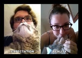 Cat Beard Meme - i just wanted my own cat beard meme guy