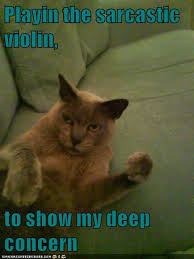 Sarcastic Cat Meme - playin the sarcastic violin to show my deep concern lolcats