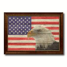 usa eagle american flag texture canvas print with brown picture