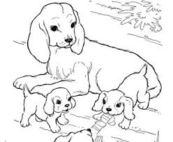 55 coloring dogs images drawings coloring