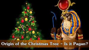 astonishing origin ofs tree pagan lightsorigin