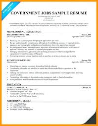 resume format for government resume resume template for government