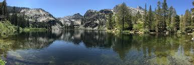 free photo outdoor lake tahoe tree free image on pixabay
