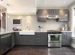 Painted Kitchen Cabinet Custom Idea Kitchen Cabinets Home Design - Idea kitchen cabinets