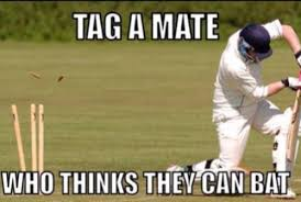 Crickets Meme - crickets meme pakistan cricket doodling through cricket meme askideas