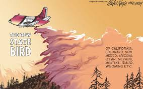 Wild Fires In Idaho And Montana by Gazette Opinion Wildfires Burn Up National Forest Budget