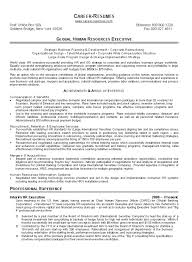 Venture Capital Resume Human Resource Executive Cover Letter