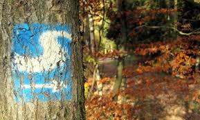 Blaue Eisdiele Bad Kreuznach Www Vg Bg De U2013 Die Homepage Der Verbandsgemeinde Betzdorf Gebhardshain