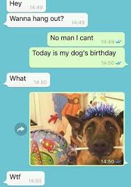 Birthday Meme Dog - dopl3r com memes hey 1449 wanna hang out 1449 no man i cant