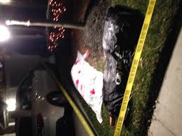 outside halloween crafts nighttime front yard halloween crime scene my halloween party