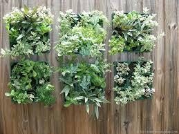 vertical succulent garden indoor gardening ideas