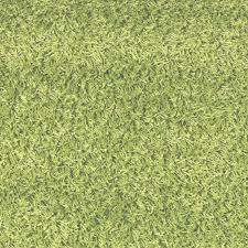 Online Home Decor Stores by Lounge Green Shag Rug Modern Shag Rugs Online Home Decor Store