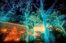 Christmas Decorations Ideas Outdoor 25 Outdoor Christmas Decoration Ideas In Pictures