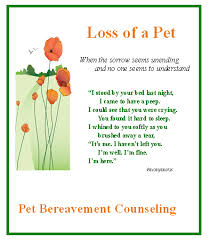 grieving the loss of a pet pet bereavement counseling dr edwards phd lcsw