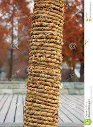 the rope stock photo image of leaf bamboohold 35443974