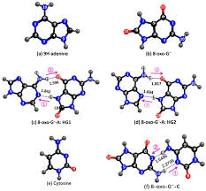 molecules free full text role of electron driven proton no wiring
