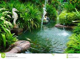 tropical zen garden stock photo image courtyard feng 15628236