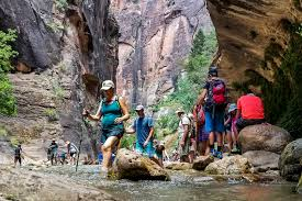 zion national park considers reservation system for entry las