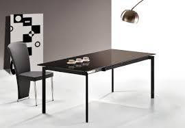 Contemporary Dining Tables by