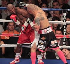 floyd mayoweather vs miguel cotto fight tatuaje imágenes por