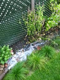 an inspiring rain garden seminar chicago bungalow association