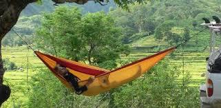 hammock and hammock chairs from brazil hammocks hanging chairs