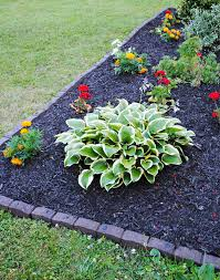 What Is Curb Appeal - 5 diy steps to amazing curb appeal the home depot