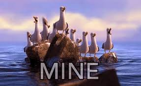 Finding Nemo Seagulls Meme - finding nemo seagulls gif find share on giphy