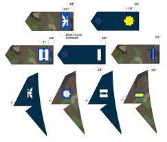 senior member rank insignia