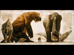 rise of mammals article mammal evolution information facts