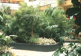 interior landscaping design decor modern on cool simple in