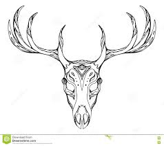 contour illustration deer skull antlers stock vector